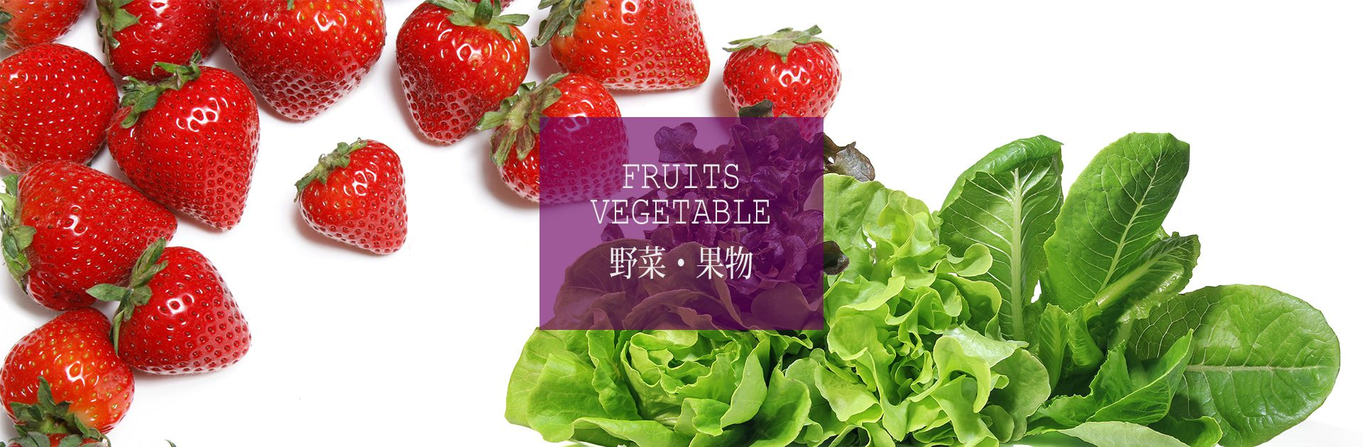 パーマリンク先: 野菜・果物生産事業