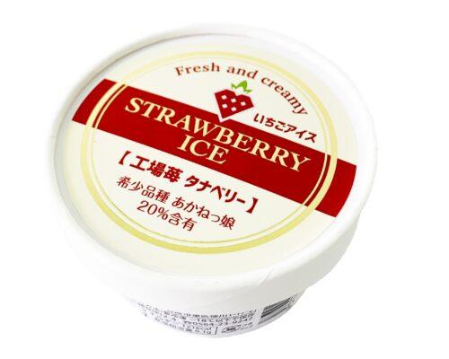 植物工場苺タナベリー入りアイス
